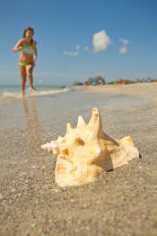 FInd Reputable Debt Consolidation Companies - Not a Stroll on the Beach